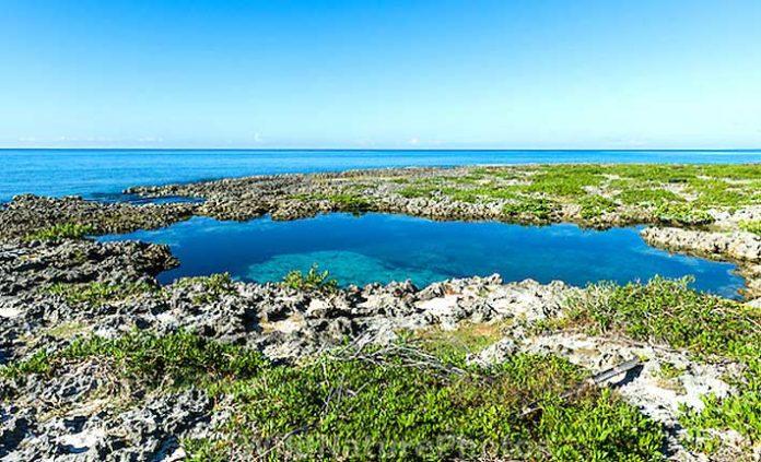 Riserva della Biosfera della penisola di Guanahacabibes